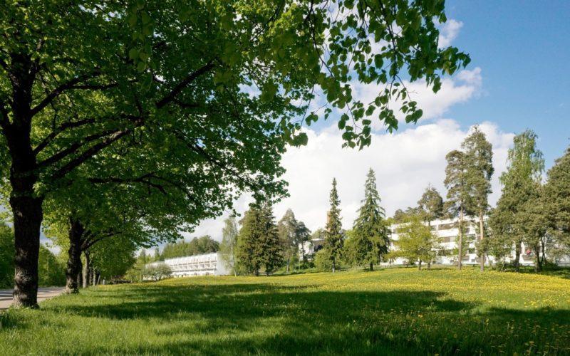 Sunilan sellutehtaan asuinalueen terassitalot  kuva Rurik Wasatjerna